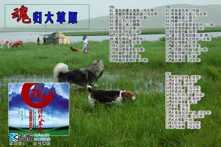 牧羊曲简谱琵琶演奏